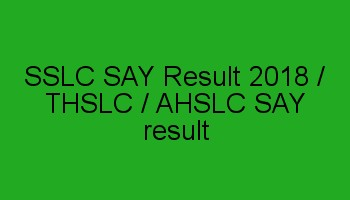 SSLC SAY Exam Result 2018 / SSLC Scrutiny result