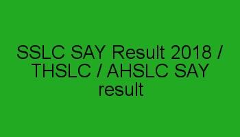 SSLC SAY Exam Result 2018 / SSLC Scrutiny result